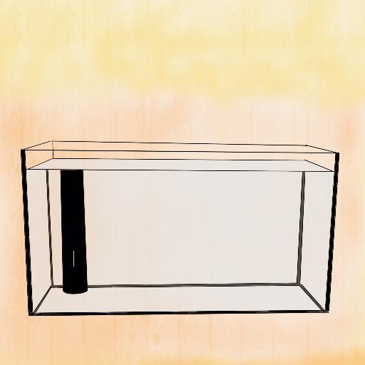 水槽ビギナー情報